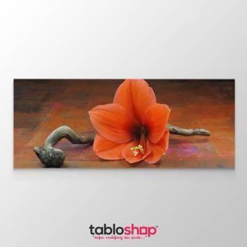 Zambak Çiçeği Tablosu (Kampanyalı)
