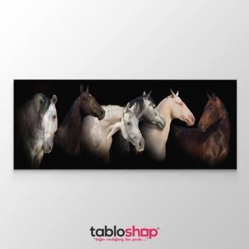 Atlar Tablosu (Kampanyalı)