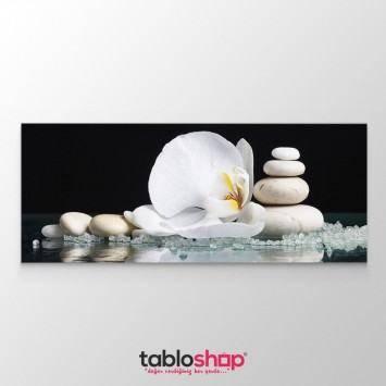 Beyaz Çiçek Tablosu (Kampanyalı)