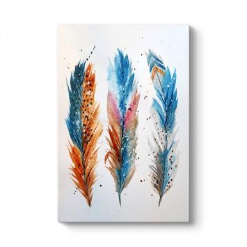 Renkli Kuş Tüyleri Tablosu
