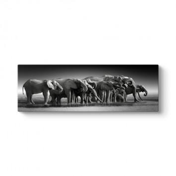 Fil Sürüsü Tablosu