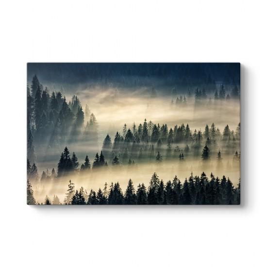 Sisli Orman Manzarası Tablosu