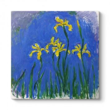 Claude Monet - Yellow Irises Tablosu