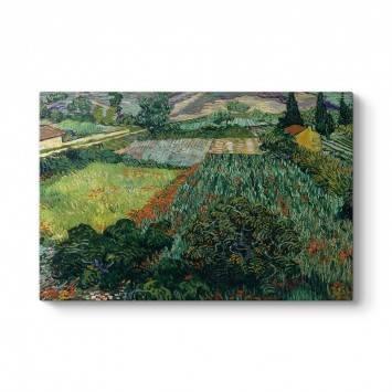Vincent Van Gogh - Gelincik Tarlası Tablosu