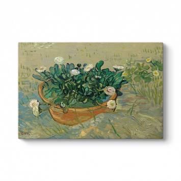 Vincent Van Gogh - Papatyalar Tablosu
