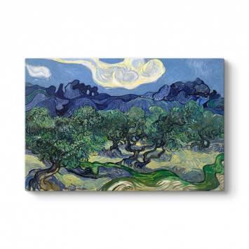 Vincent Van Gogh - Zeytin Ağaçları Tablosu