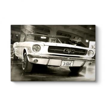 1967 Model Ford Mustang Tablosu