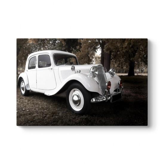 Vintage Car Tablosu