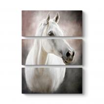 Beyaz At Tablosu