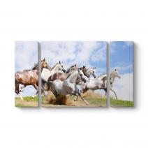 Koşan Atlar Tablosu