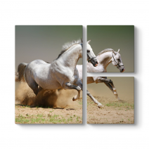 Kumda Koşan Beyaz Atlar Tablosu