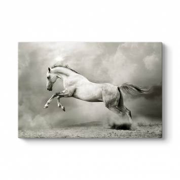 Şahlanan Beyaz At Tablosu
