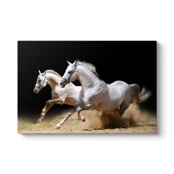Koşan Beyaz Atlar Tablosu
