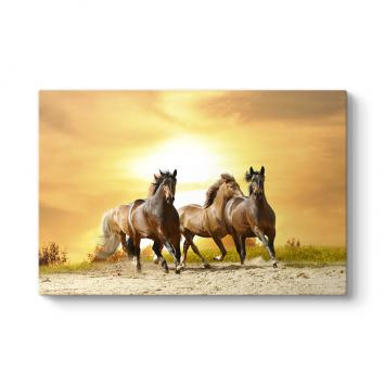 Gün Batımı Atlar Tablosu