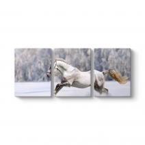 Karda Koşan Beyaz At Tablosu