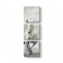 Koşan Beyaz At Tablosu