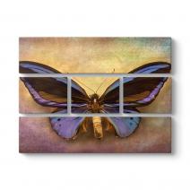 Modern Kelebek Tablo