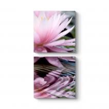 Nilüfer Çiçeği Tablosu