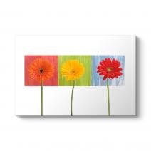 Dekoratif Çiçek Tablosu