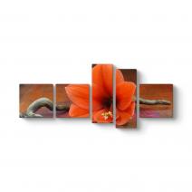 Doğal Narin Çiçek Panorama Tablo