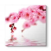 Spring Flowers Tablosu