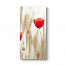 Gelincik Çiçeği Tablosu
