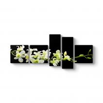 Çiçek Dalı Panorama Tablo
