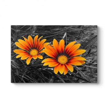 Sarı Çiçekler Tablosu