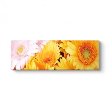 Pembe Sarı Çiçek Panorama Tablo