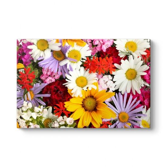 Rengarenk Çiçekler Tablosu