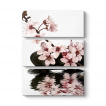 Orkide Çiçeği IV Tablo