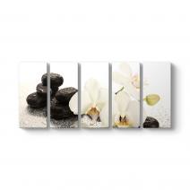 Orkide ve Taşlar Tablosu