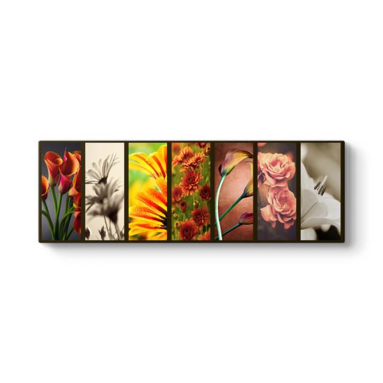 Deco Flowers Panorama Tablo