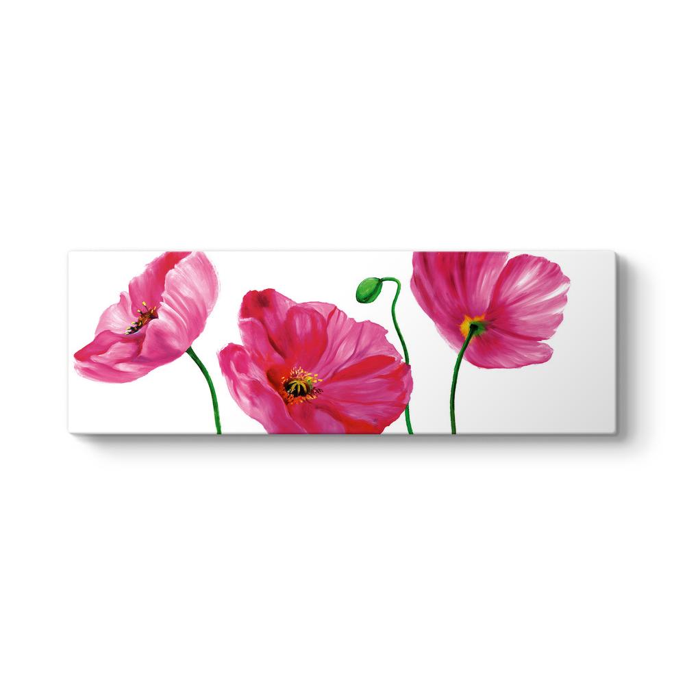 çiçek Boyama Panorama Tablo