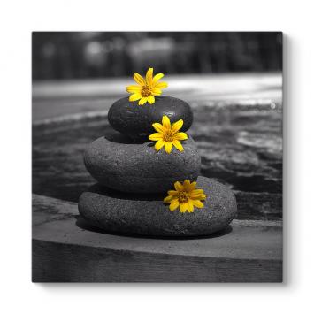 Sarı Çiçekler ve Taşlar Tablosu