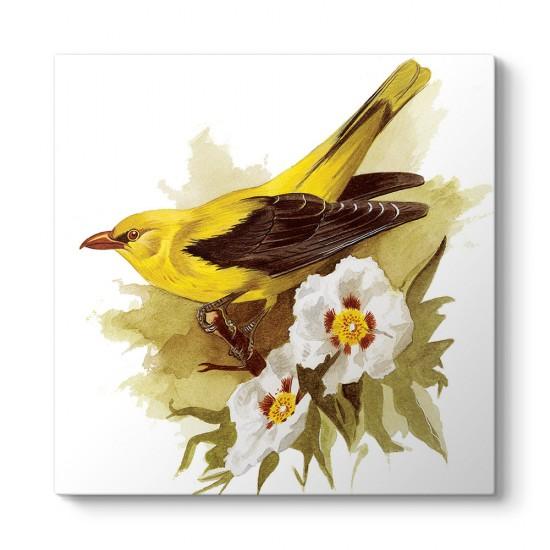 Goldfinch Bird Tablosu