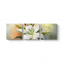 Abstract Çiçek Tablosu