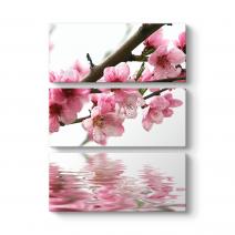 Pembe Çiçek ve Su Tablosu