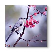 Çiçek ve Kuş Tablosu