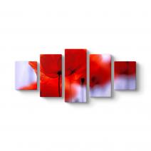 Kırmızı Gelincikler Tablosu