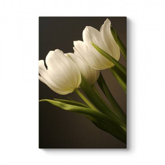 Lale Çiçeği Tablosu