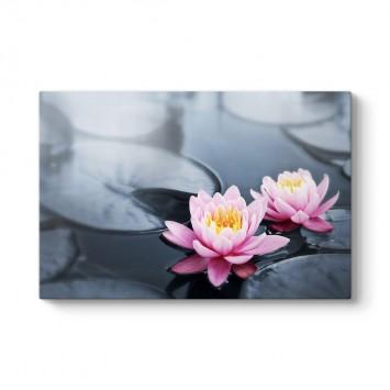 Nilüfer Çiçeği Abant Tablosu