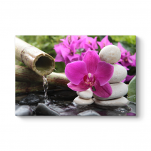 Bambu ve Orkide Tablosu