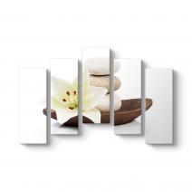Çakıl Taşları ve Narin Çiçek Tablosu