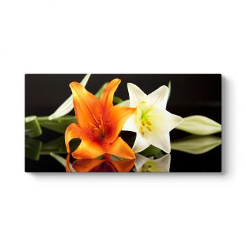 Süsen İris Çiçeği Tablosu
