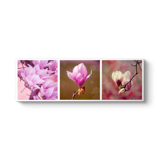 Çiçek Kolajı Panorama Tablo