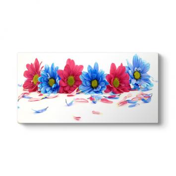 Kırmızı Mavi Çiçekler Panorama Tablo