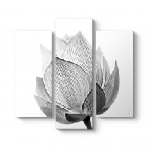 Siyah Beyaz Çiçek Tablosu
