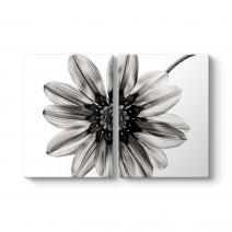 Siyah Beyaz Çiçek I Tablosu