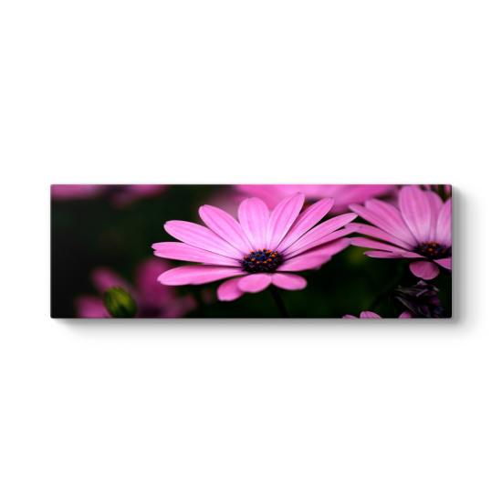 Çiçek Panorama Tablo